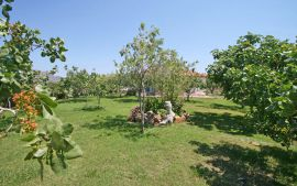 Eleana Apartments, Stavros, garden-1a