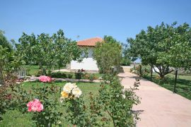 Eleana Apartments, Stavros, Garden 5